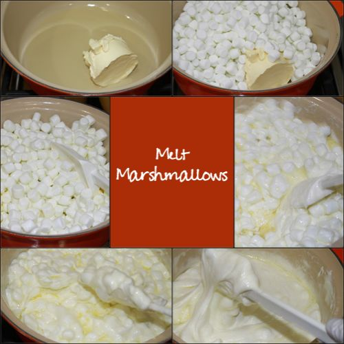 wpid-MeltMarshmallows-2011-01-12-00-01.jpg
