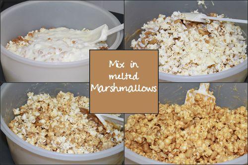 wpid-MixInMeltedMarshmallows-2011-01-12-00-01.jpg