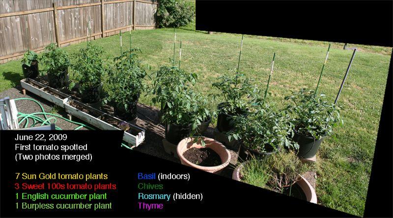 wpid-StefsGarden-2009-2011-07-1-00-01.jpg