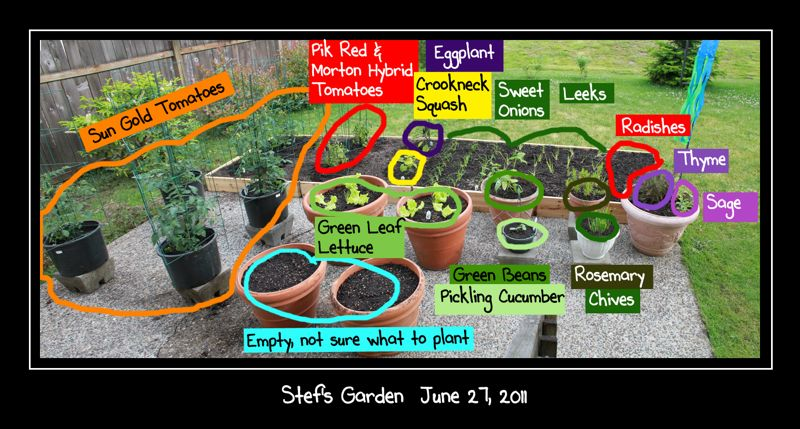 wpid-StefsGarden2011-0627-labeled-2011-07-1-00-01.jpg