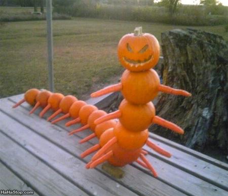 wpid-Centipumpkin-2011-10-31-07-34.jpg