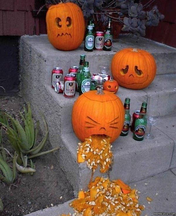 wpid-Halloween_Pumpkins-2011-10-26-14-31.jpg