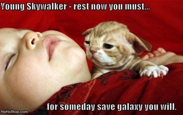 wpid-You_Must_Rest-2012-02-10-07-30.jpg