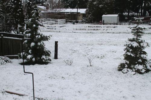wpid-SpringSnowDay-2012-03-22-09-52.jpg