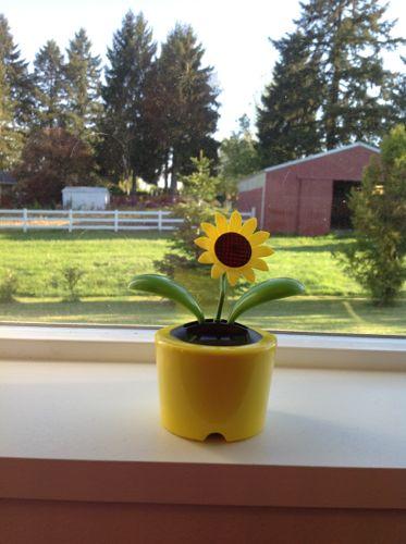 wpid-SolarSunFlower-2-2012-05-7-14-37.jpg