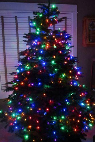 wpid-ChristmasTree-2013-1-2013-12-2-20-55.jpg